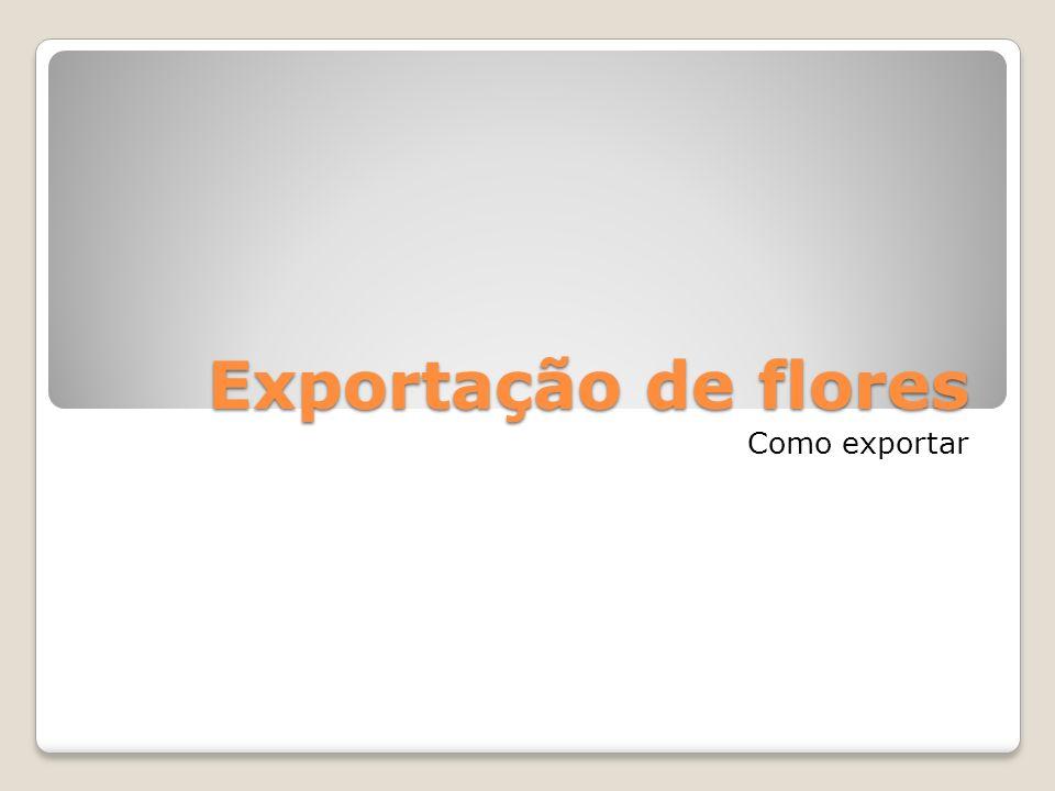 Exportação de flores Como exportar