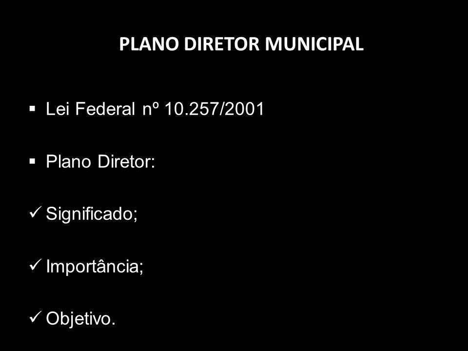 PLANO DIRETOR MUNICIPAL