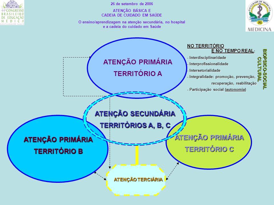 ATENÇÃO BÁSICA E CADEIA DE CUIDADO EM SAÚDE BIOPSICO-SOCIAL CULTURAL