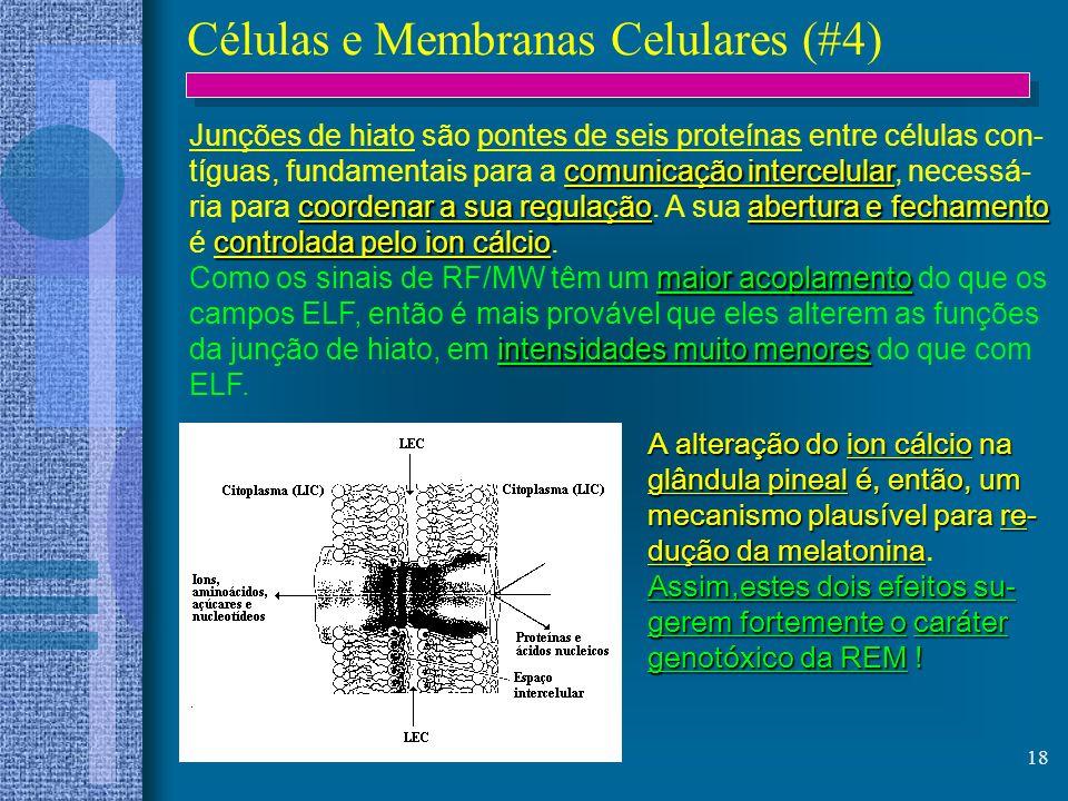 Células e Membranas Celulares (#4)