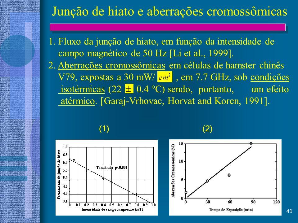 Junção de hiato e aberrações cromossômicas