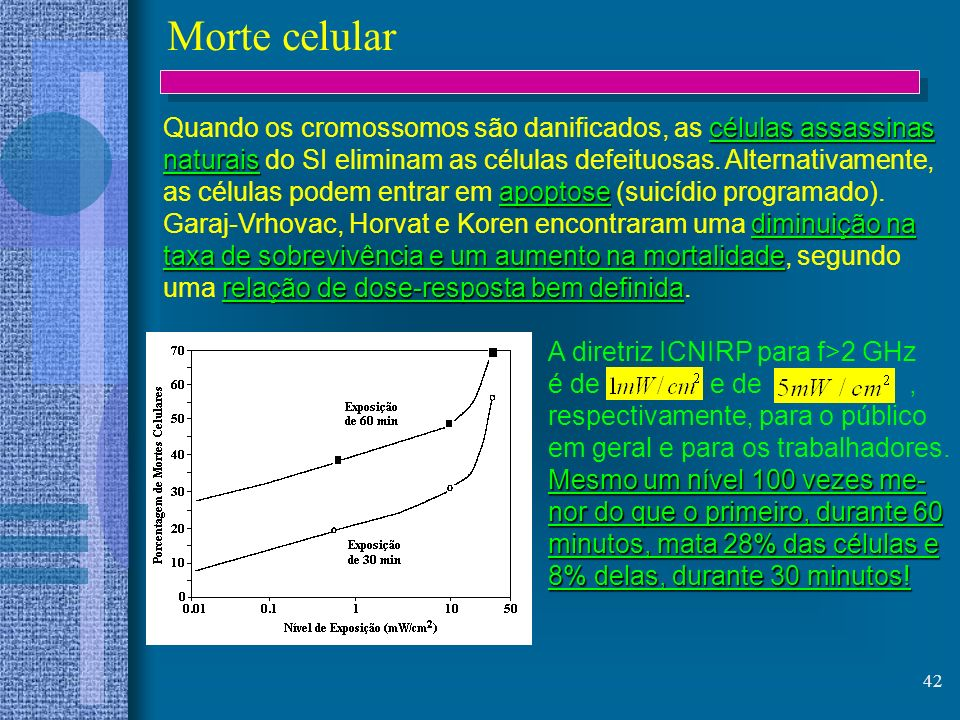 Morte celular Quando os cromossomos são danificados, as células assassinas. naturais do SI eliminam as células defeituosas. Alternativamente,