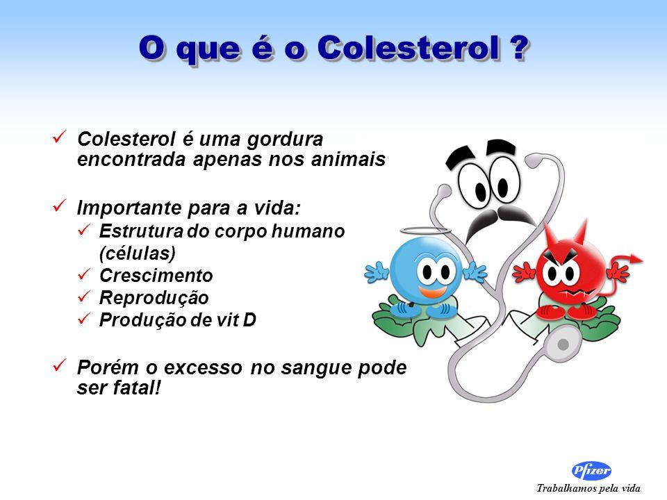 O que é o Colesterol Colesterol é uma gordura encontrada apenas nos animais. Importante para a vida: