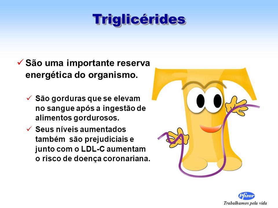 Triglicérides São uma importante reserva energética do organismo.