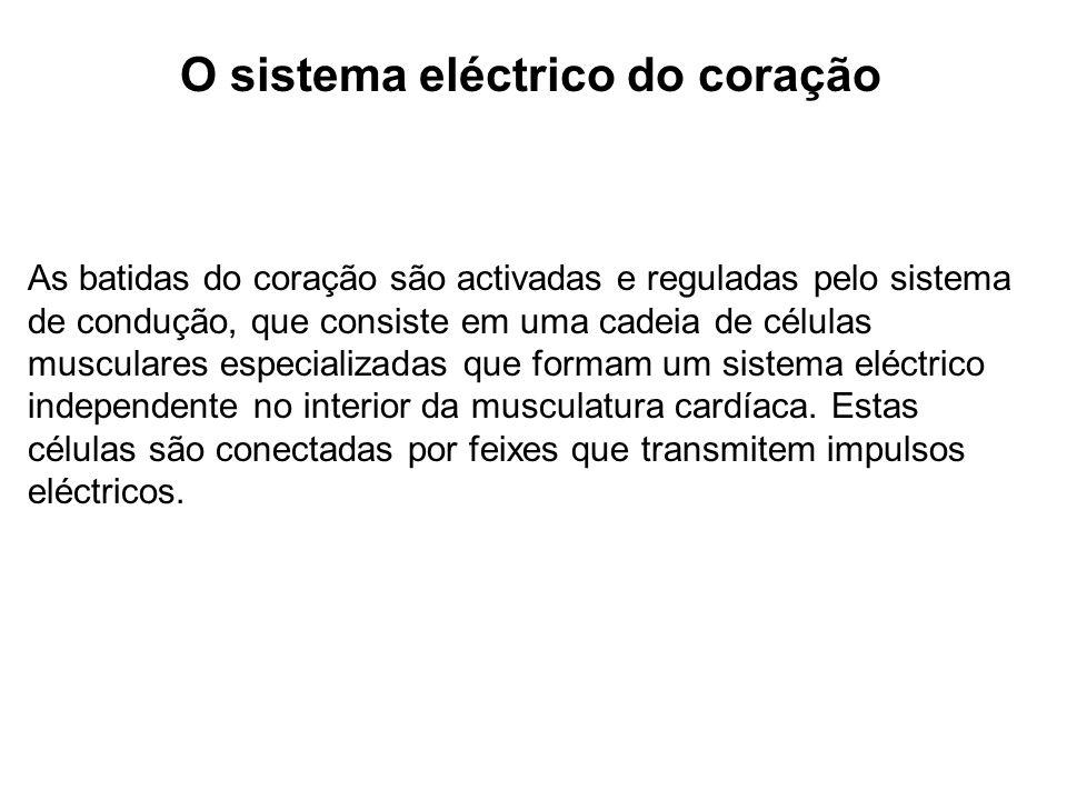 O sistema eléctrico do coração