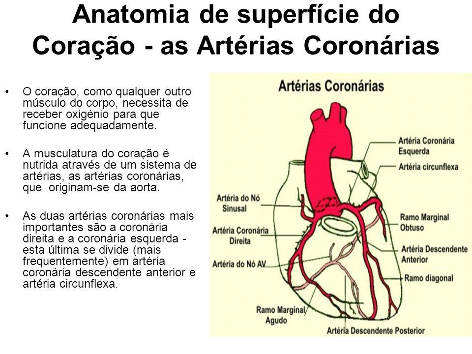 Anatomia de superfície do Coração - as Artérias Coronárias