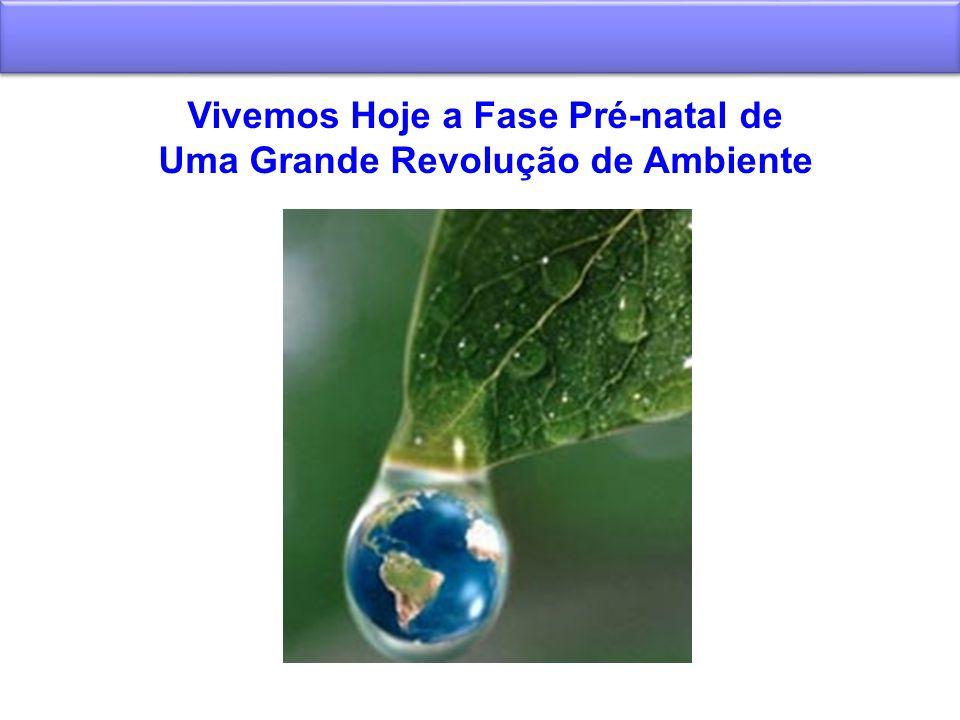 Vivemos Hoje a Fase Pré-natal de Uma Grande Revolução de Ambiente