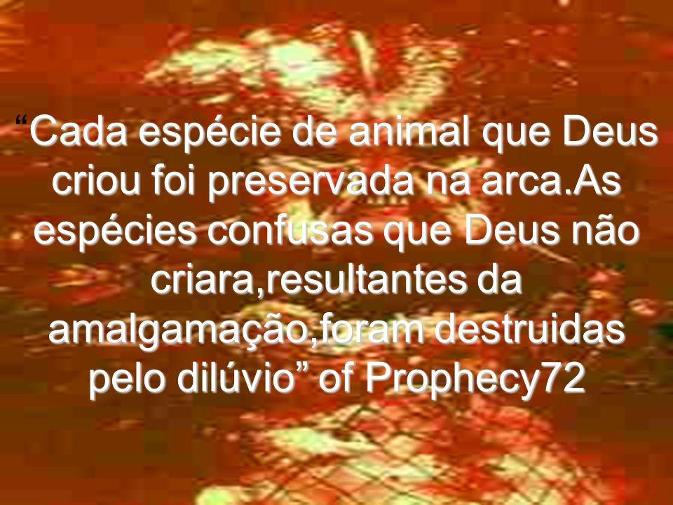 Cada espécie de animal que Deus criou foi preservada na arca