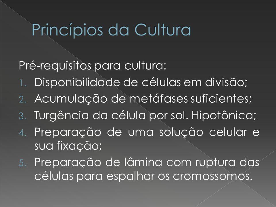 Princípios da Cultura Pré-requisitos para cultura: