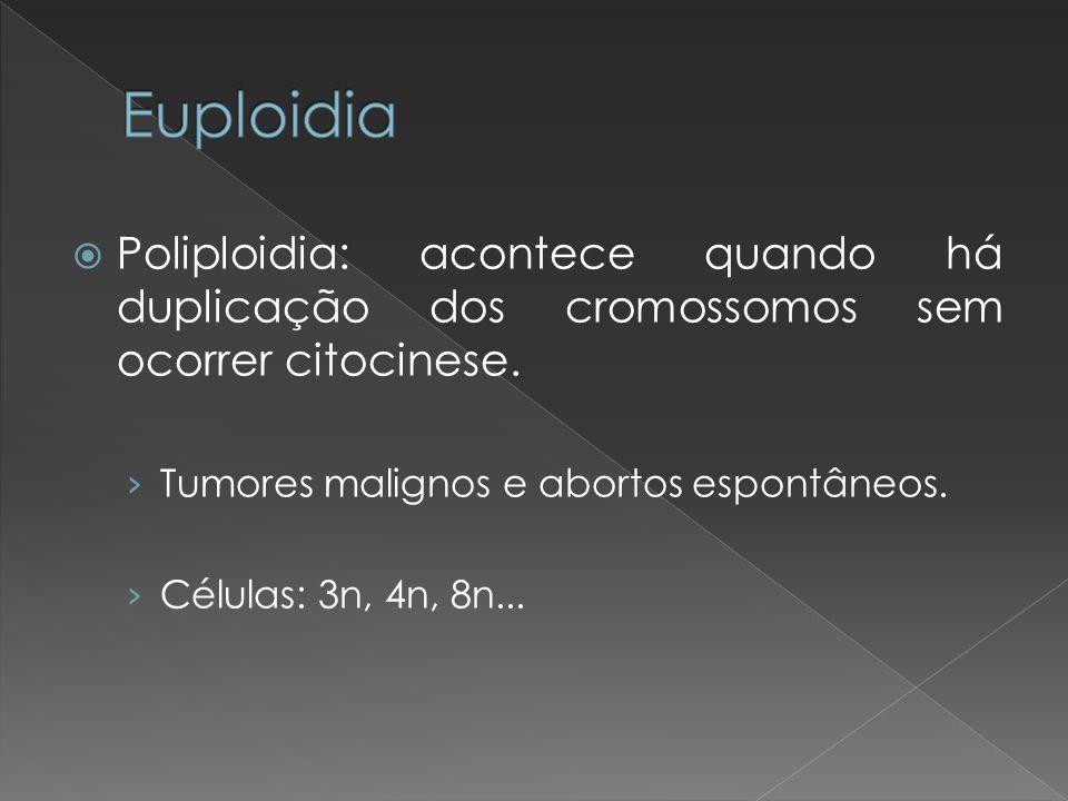 Euploidia Poliploidia: acontece quando há duplicação dos cromossomos sem ocorrer citocinese. Tumores malignos e abortos espontâneos.