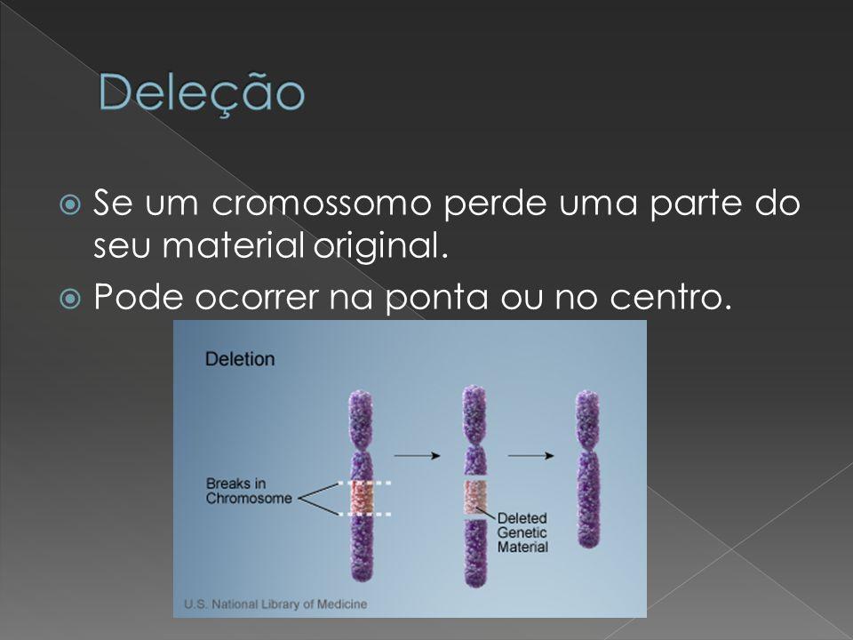 Deleção Se um cromossomo perde uma parte do seu material original.