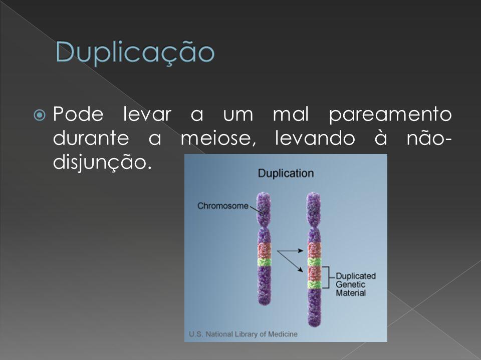 Duplicação Pode levar a um mal pareamento durante a meiose, levando à não-disjunção.