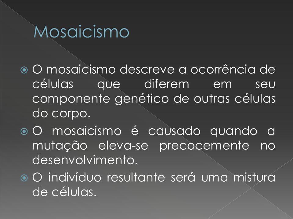 Mosaicismo O mosaicismo descreve a ocorrência de células que diferem em seu componente genético de outras células do corpo.