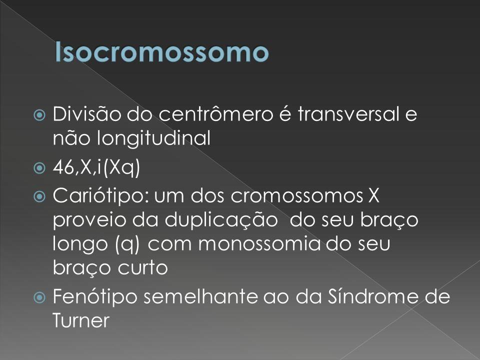 Isocromossomo Divisão do centrômero é transversal e não longitudinal