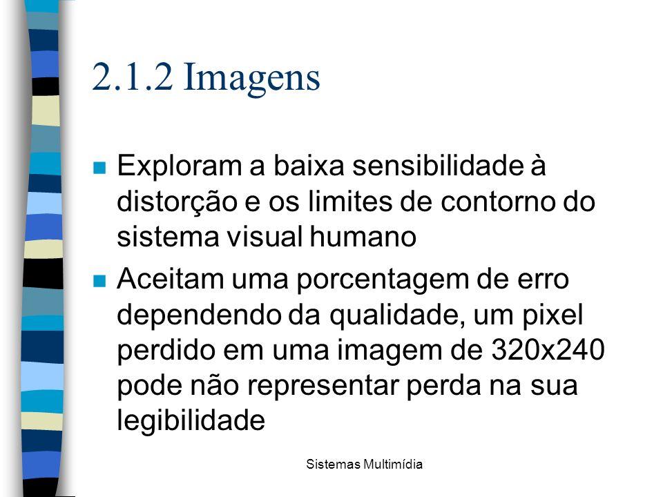 2.1.2 Imagens Exploram a baixa sensibilidade à distorção e os limites de contorno do sistema visual humano.