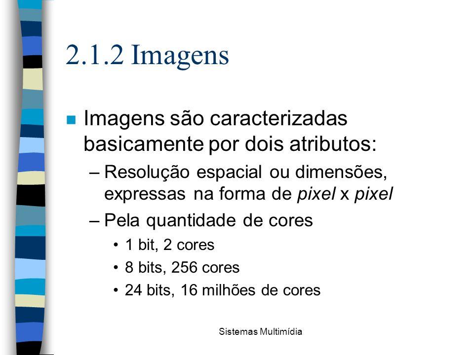 2.1.2 Imagens Imagens são caracterizadas basicamente por dois atributos: Resolução espacial ou dimensões, expressas na forma de pixel x pixel.