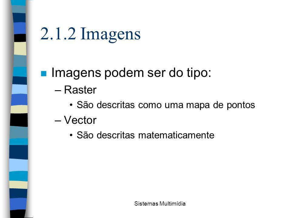 2.1.2 Imagens Imagens podem ser do tipo: Raster Vector