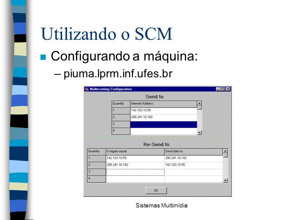 Utilizando o SCM Configurando a máquina: piuma.lprm.inf.ufes.br