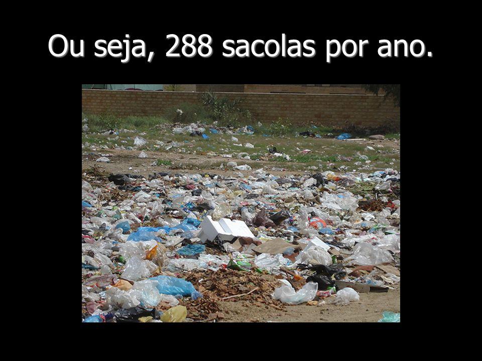 Ou seja, 288 sacolas por ano.