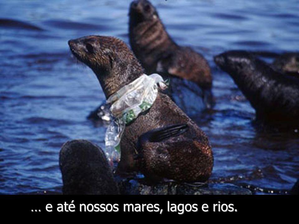 … e até nossos mares, lagos e rios.