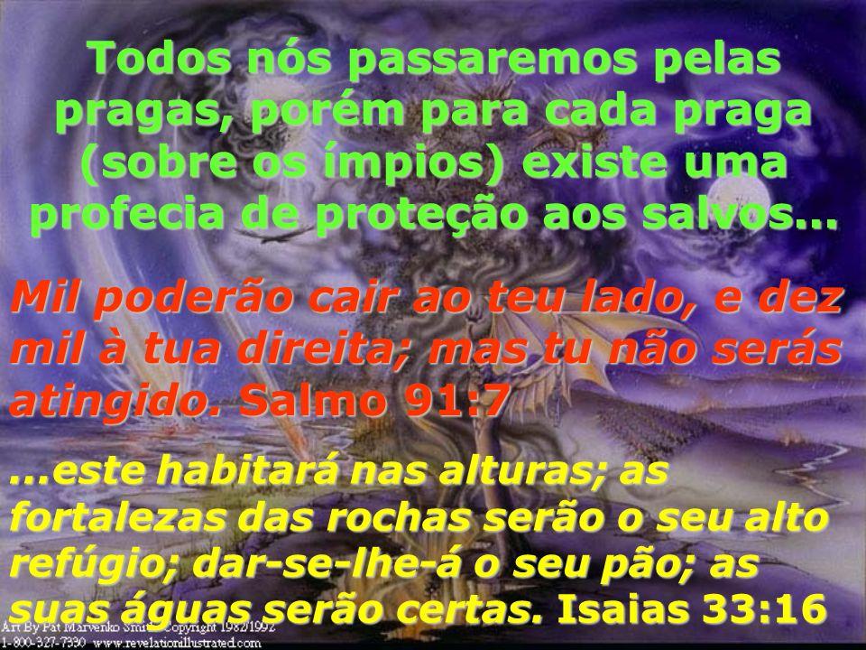 Todos nós passaremos pelas pragas, porém para cada praga (sobre os ímpios) existe uma profecia de proteção aos salvos...