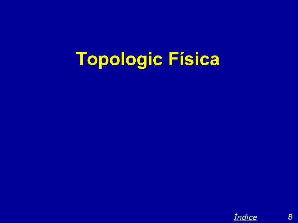 Topologic Física Índice 8