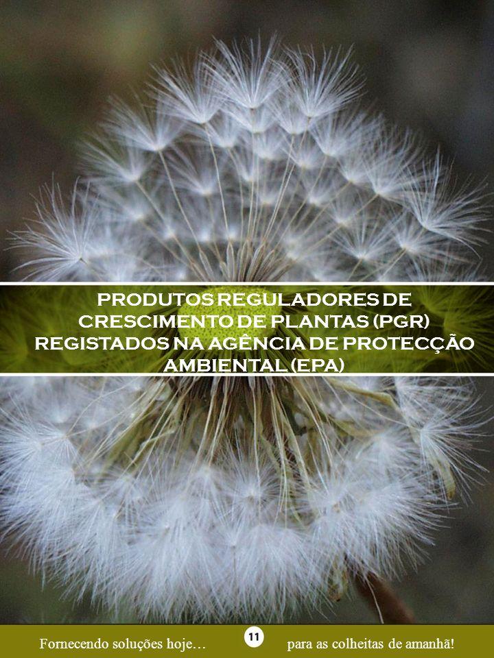Page 11PRODUTOS REGULADORES DE CRESCIMENTO DE PLANTAS (PGR) REGISTADOS NA AGÊNCIA DE PROTECÇÃO AMBIENTAL (EPA)