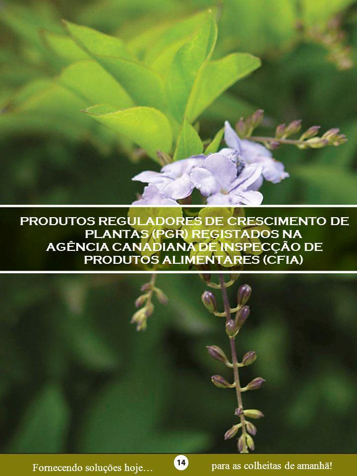 Page 14PRODUTOS REGULADORES DE CRESCIMENTO DE PLANTAS (PGR) REGISTADOS NA. AGÊNCIA CANADIANA DE INSPECÇÃO DE PRODUTOS ALIMENTARES (CFIA)