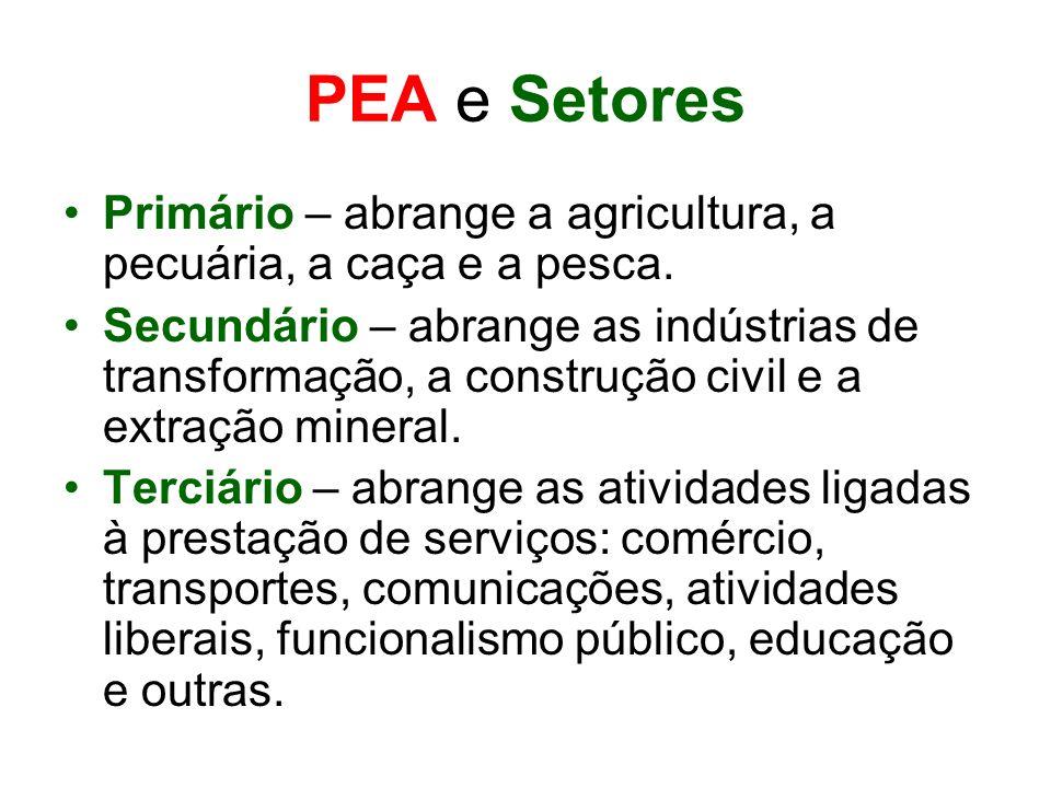 PEA e SetoresPrimário – abrange a agricultura, a pecuária, a caça e a pesca.