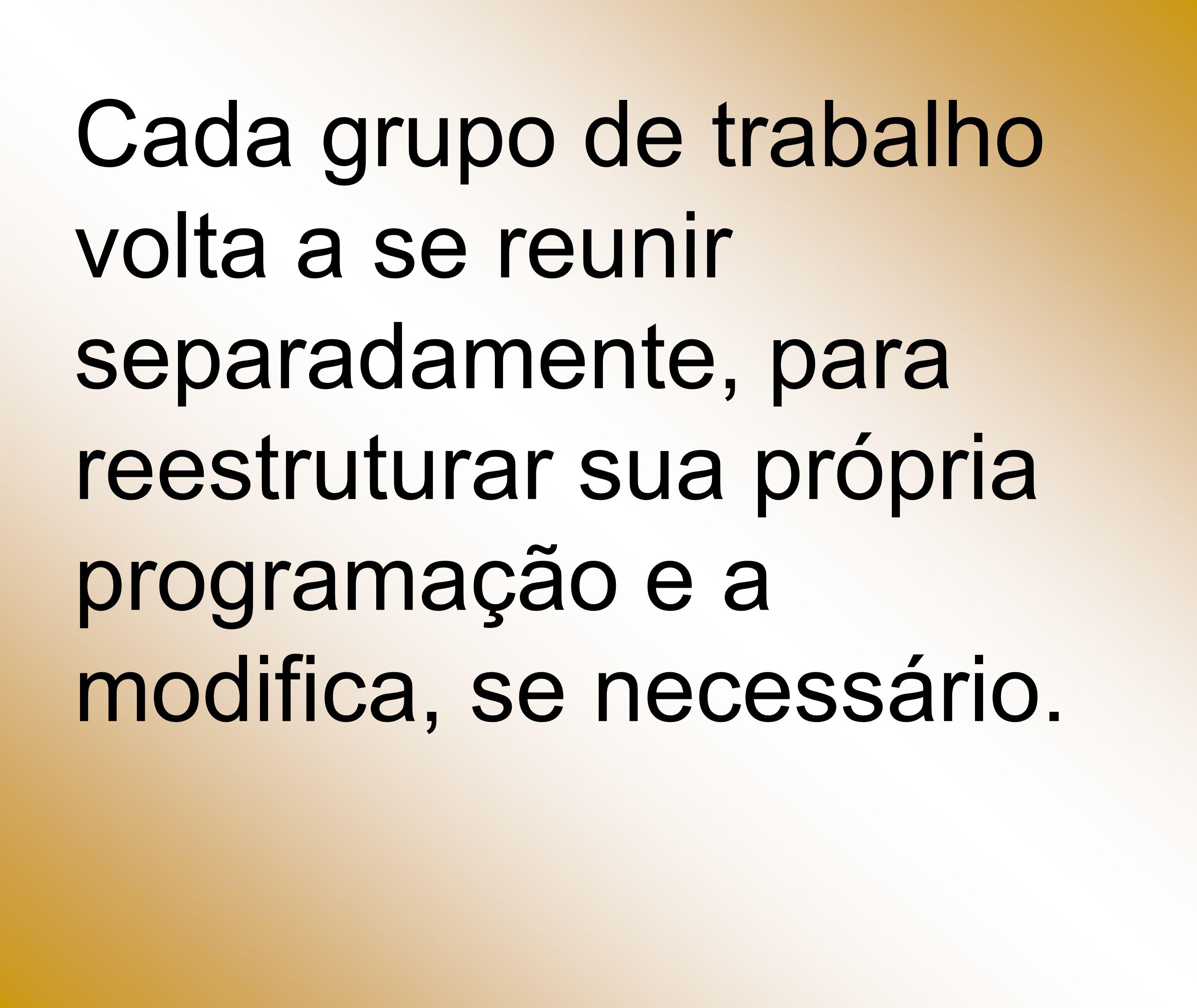 Cada grupo de trabalho volta a se reunir separadamente, para reestruturar sua própria programação e a modifica, se necessário.
