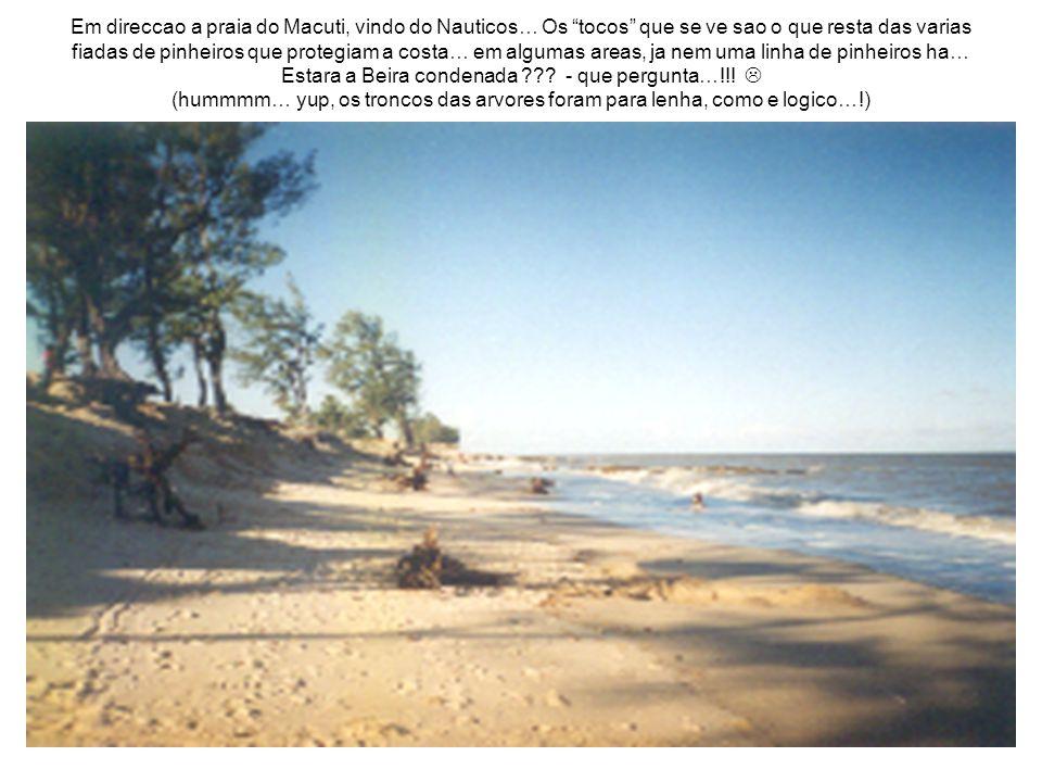 Em direccao a praia do Macuti, vindo do Nauticos… Os tocos que se ve sao o que resta das varias fiadas de pinheiros que protegiam a costa… em algumas areas, ja nem uma linha de pinheiros ha… Estara a Beira condenada .
