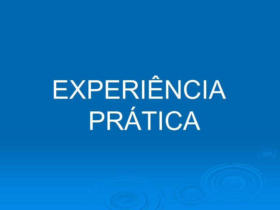 EXPERIÊNCIA PRÁTICA
