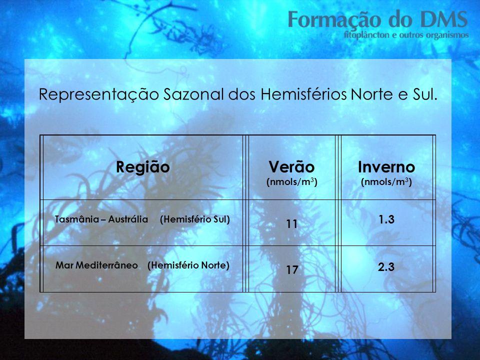 Verão (nmols/m3) Inverno (nmols/m3)