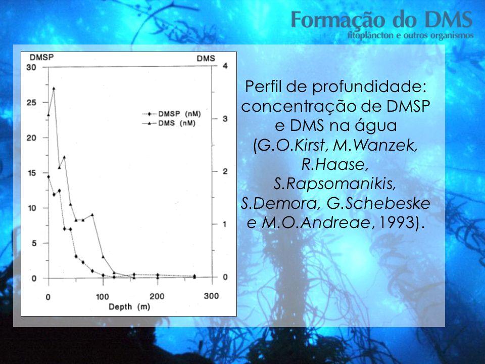 Perfil de profundidade: concentração de DMSP e DMS na água (G. O
