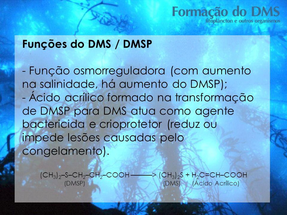 Funções do DMS / DMSP - Função osmorreguladora (com aumento na salinidade, há aumento do DMSP);