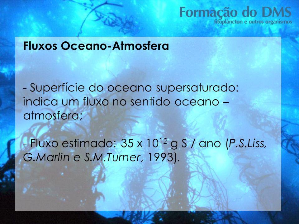 Fluxos Oceano-Atmosfera