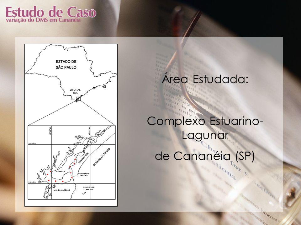 Complexo Estuarino-Lagunar