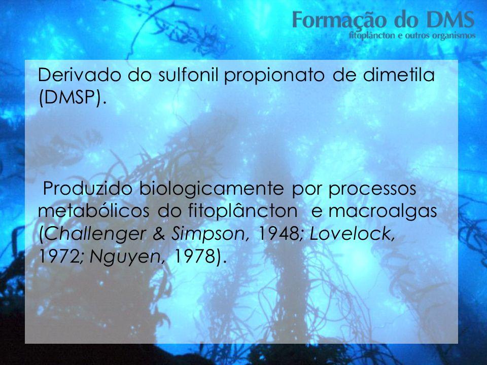Derivado do sulfonil propionato de dimetila (DMSP).