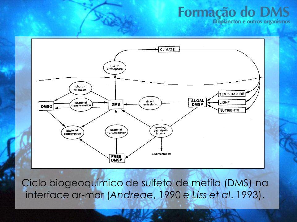 Tese Ciclo biogeoquímico de sulfeto de metila (DMS) na interface ar-mar (Andreae, 1990 e Liss et al.