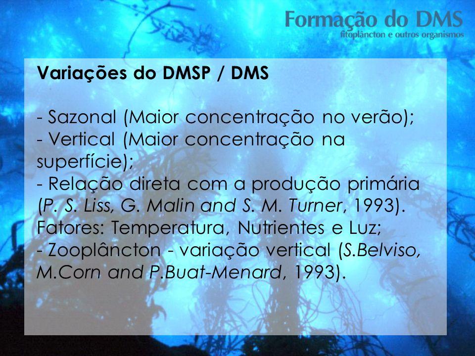 Variações do DMSP / DMS - Sazonal (Maior concentração no verão); - Vertical (Maior concentração na superfície);