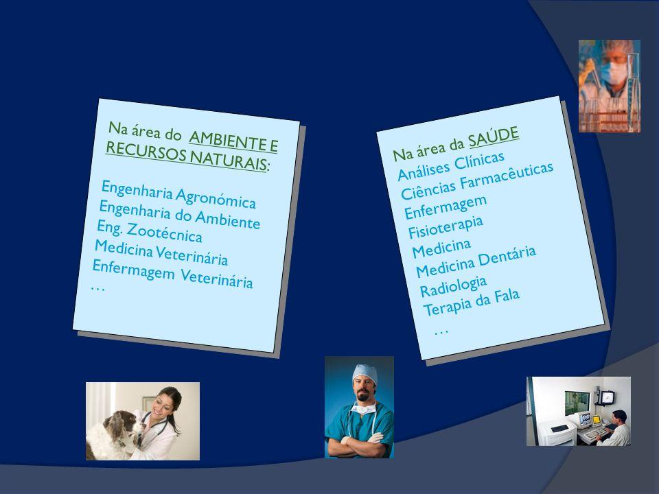 Na área do AMBIENTE E RECURSOS NATURAIS: