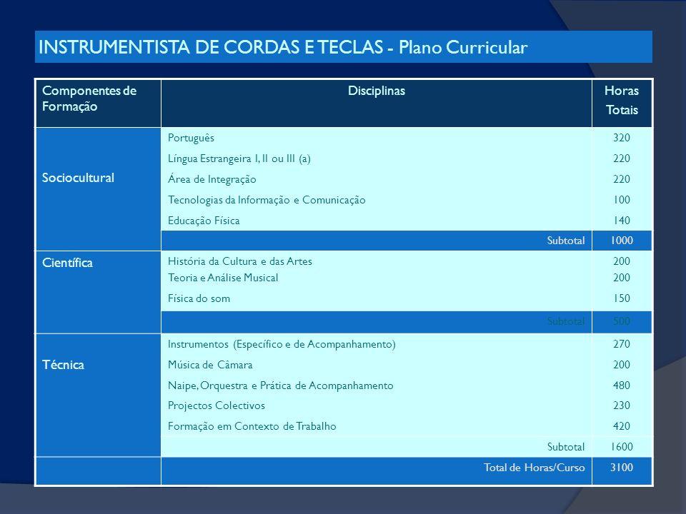 INSTRUMENTISTA DE CORDAS E TECLAS - Plano Curricular