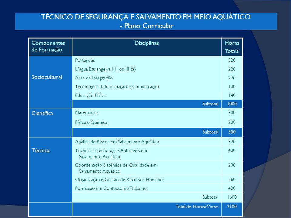 TÉCNICO DE SEGURANÇA E SALVAMENTO EM MEIO AQUÁTICO - Plano Curricular