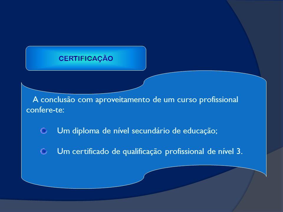 A conclusão com aproveitamento de um curso profissional confere-te: