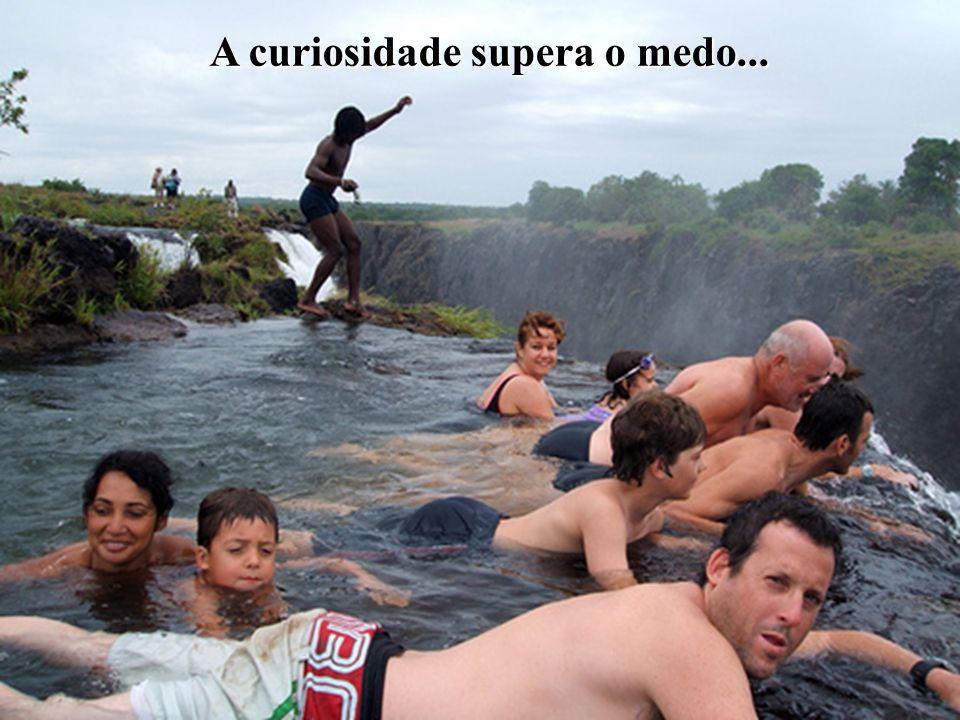 A curiosidade supera o medo...