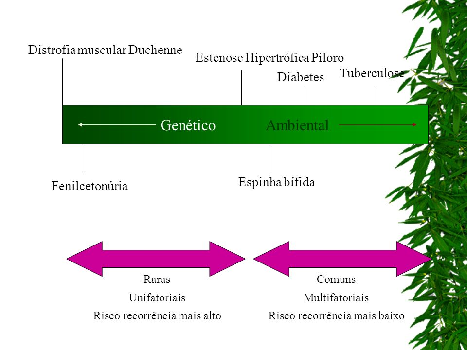 Genético Ambiental Distrofia muscular Duchenne