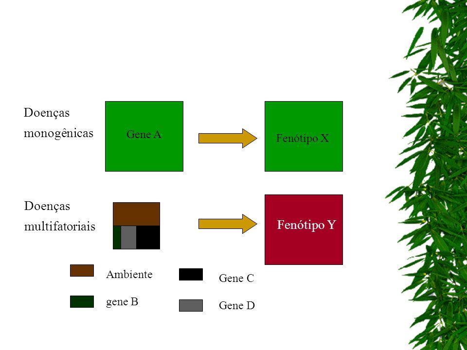 Doenças monogênicas Doenças multifatoriais Fenótipo Y Gene A