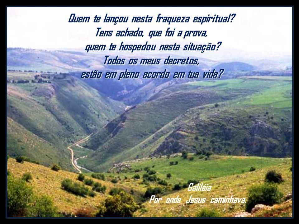 estão em pleno acordo em tua vida Galiléia Por onde Jesus caminhava.