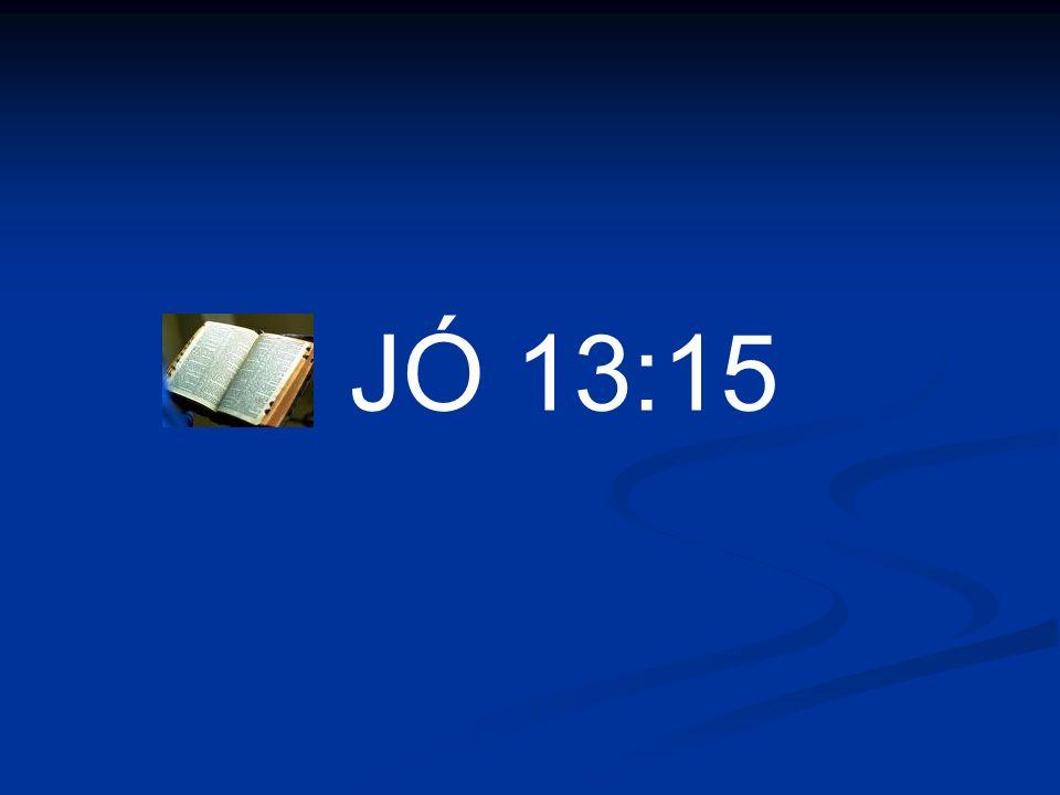 JÓ 13:15