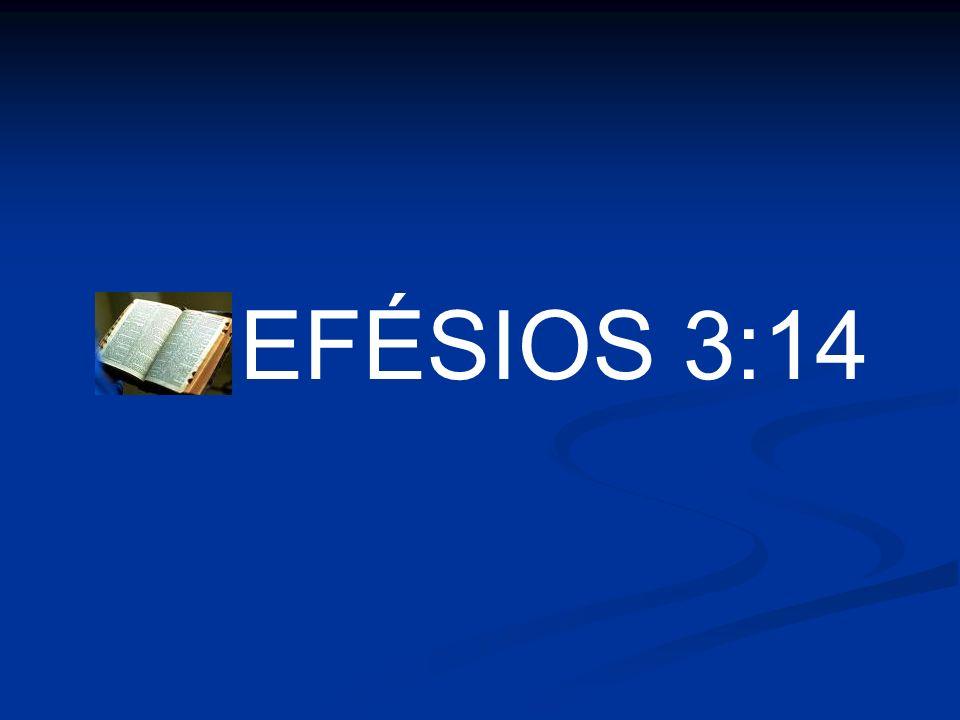EFÉSIOS 3:14